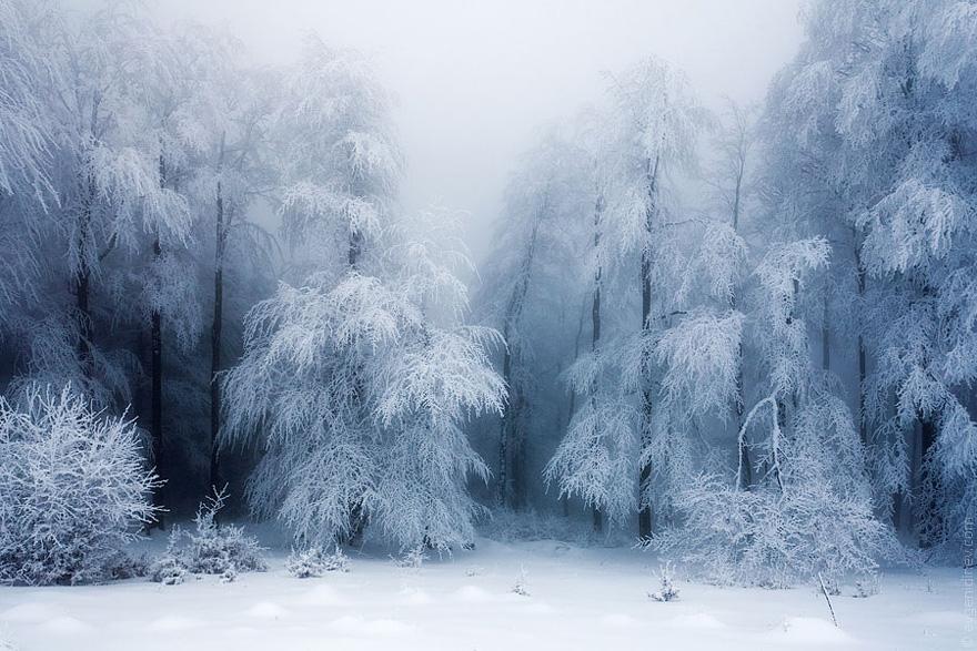 ⛄️ Hermosas Imagenes De Paisajes De Invierno De Todo