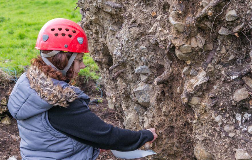 arqueólogo encuentra esqueleto en un arbol