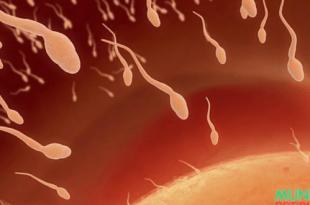 Cuando me explicaron por que debía tragar esperma, no pude creerl