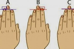 La forma de tus dedos meñique, medio, anular, pulgar e indice, habla de tu personalidad.